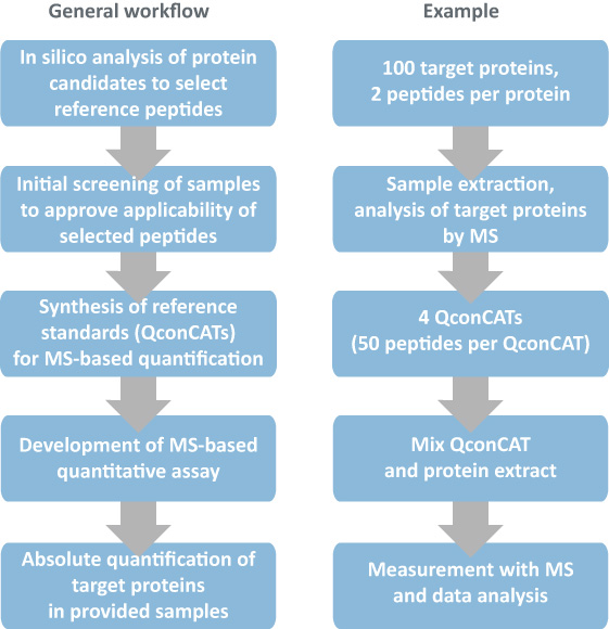 absolute protein quantification service workflow