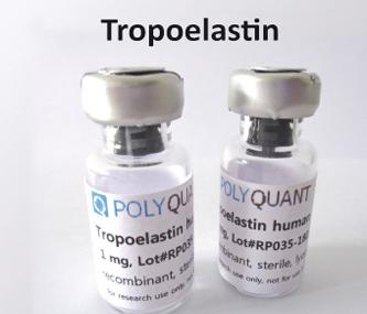 Tropoelastin